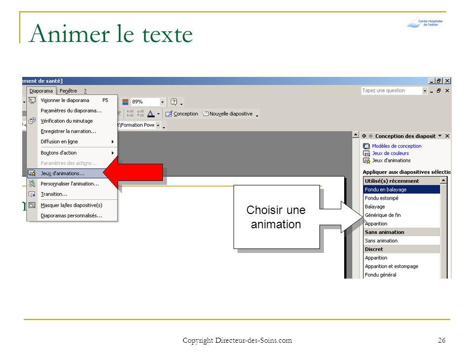 Copyright Directeur-des-Soins.com