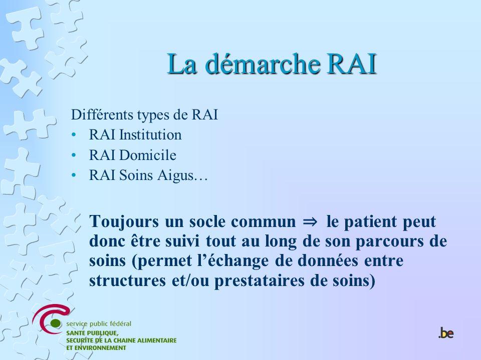 La démarche RAI Différents types de RAI. RAI Institution. RAI Domicile. RAI Soins Aigus…