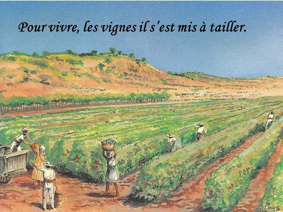 Pour vivre, les vignes il s'est mis à tailler.