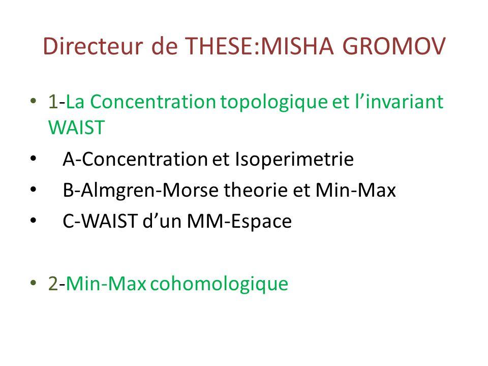 Directeur de THESE:MISHA GROMOV