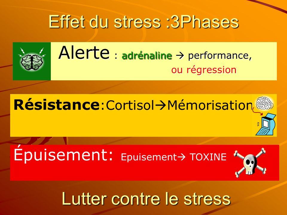Effet du stress :3Phases
