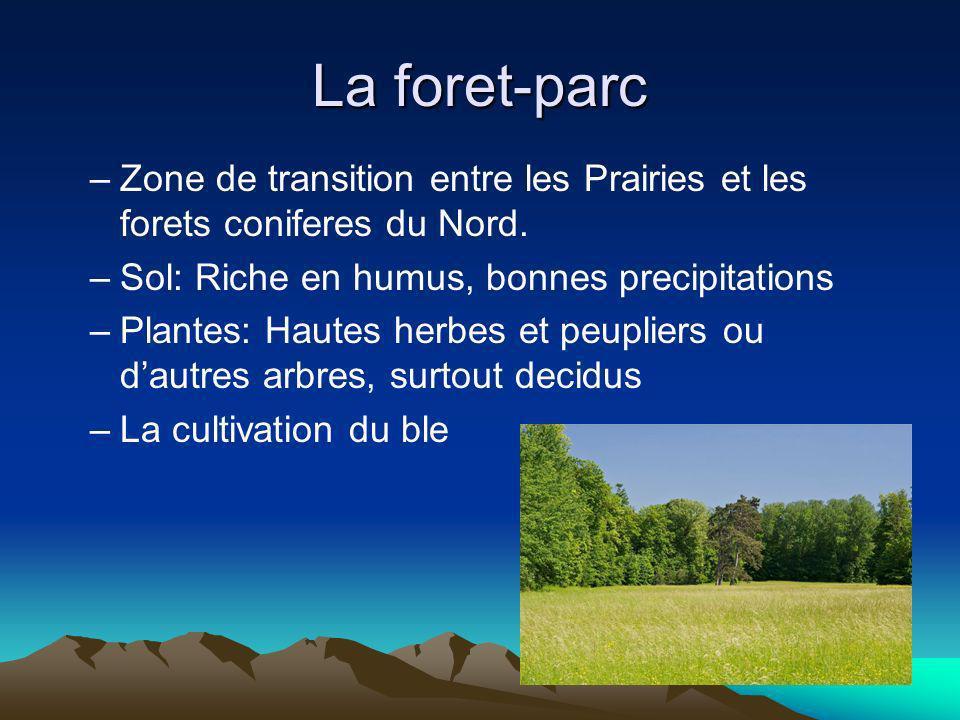 La foret-parc Zone de transition entre les Prairies et les forets coniferes du Nord. Sol: Riche en humus, bonnes precipitations.