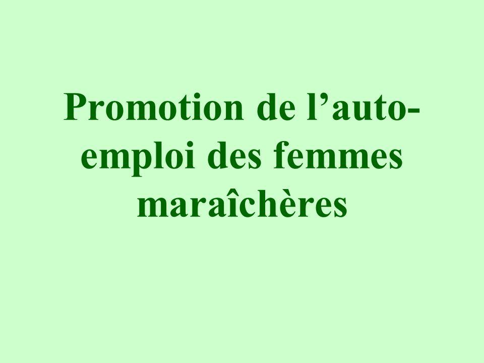 Promotion de l'auto-emploi des femmes maraîchères