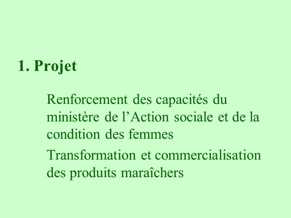 1. Projet Renforcement des capacités du ministère de l'Action sociale et de la condition des femmes.