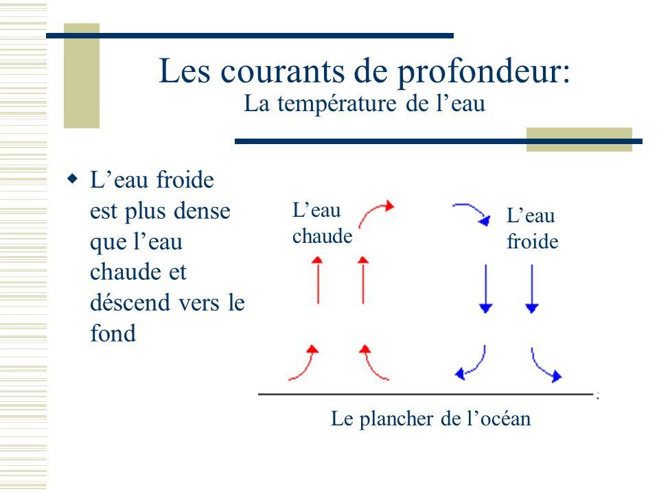 Les courants de profondeur: La température de l'eau