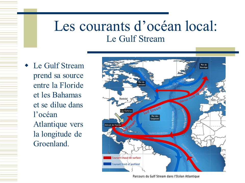 Les courants d'océan local: Le Gulf Stream