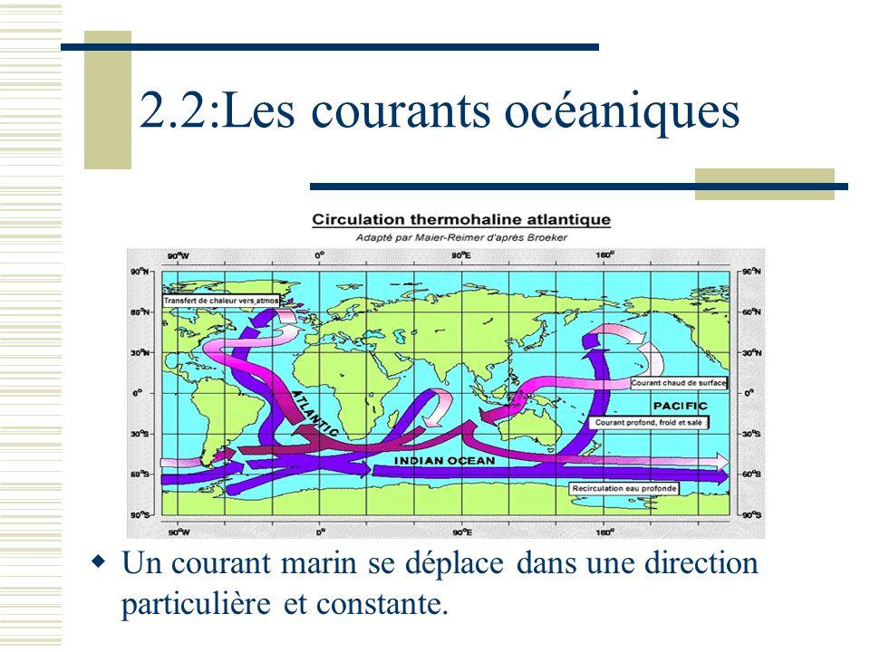 2.2:Les courants océaniques