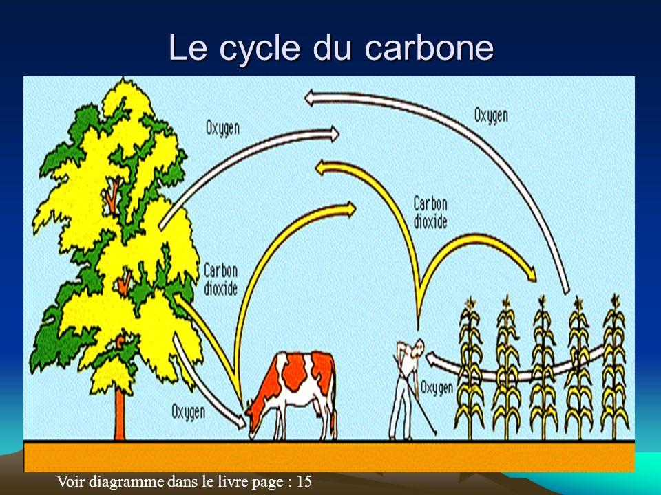 Le cycle du carbone Voir diagramme dans le livre page : 15