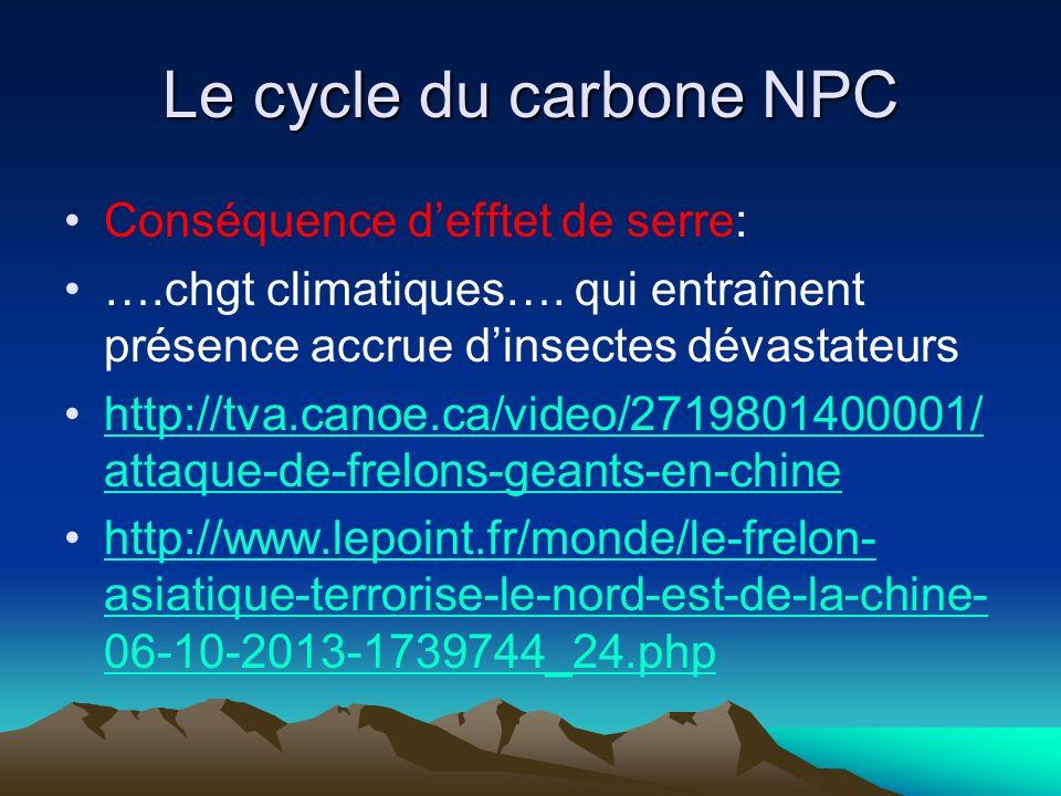 Le cycle du carbone NPC Conséquence d'efftet de serre: