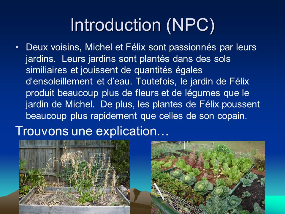 Introduction (NPC) Trouvons une explication…