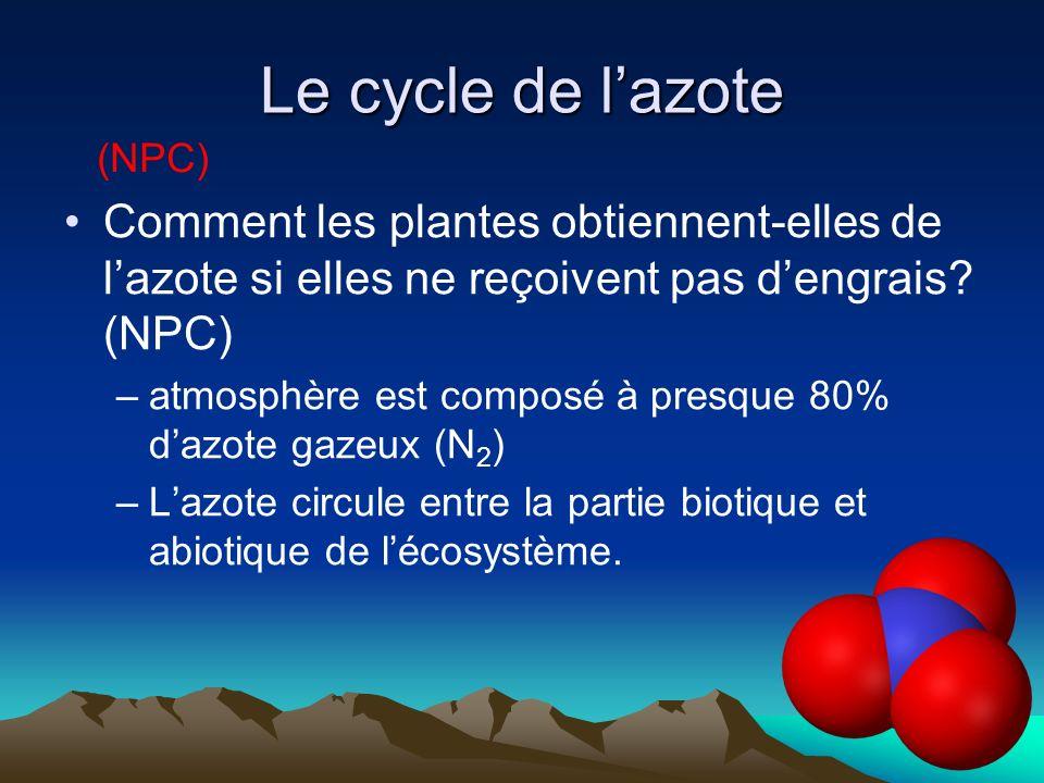 Le cycle de l'azote (NPC) Comment les plantes obtiennent-elles de l'azote si elles ne reçoivent pas d'engrais (NPC)