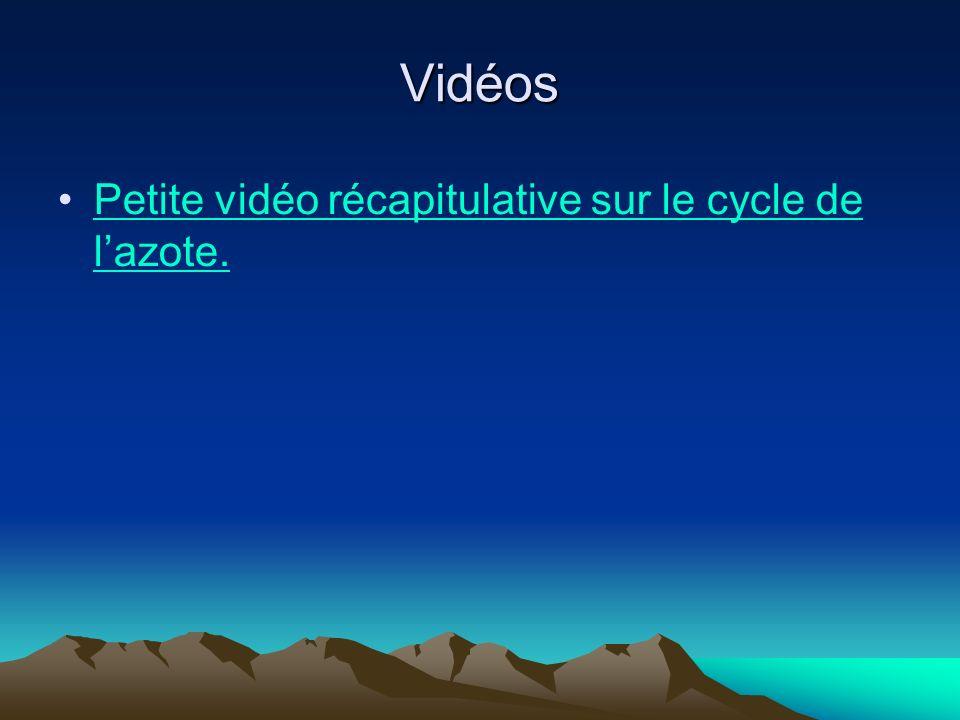 Vidéos Petite vidéo récapitulative sur le cycle de l'azote.