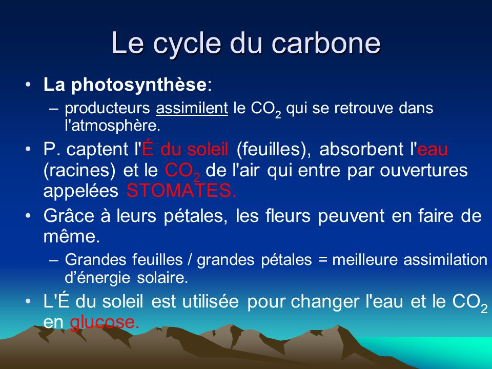 Le cycle du carbone La photosynthèse:
