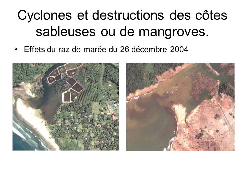 Cyclones et destructions des côtes sableuses ou de mangroves.