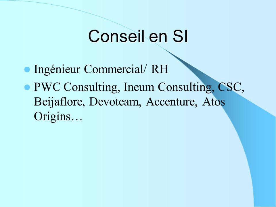 Conseil en SI Ingénieur Commercial/ RH