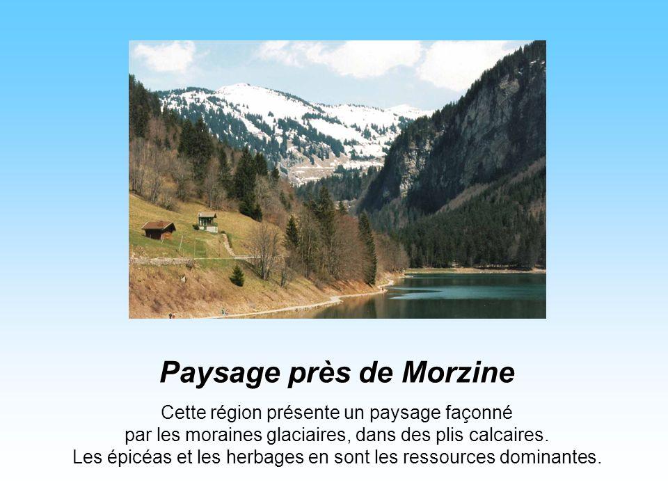 Paysage près de Morzine