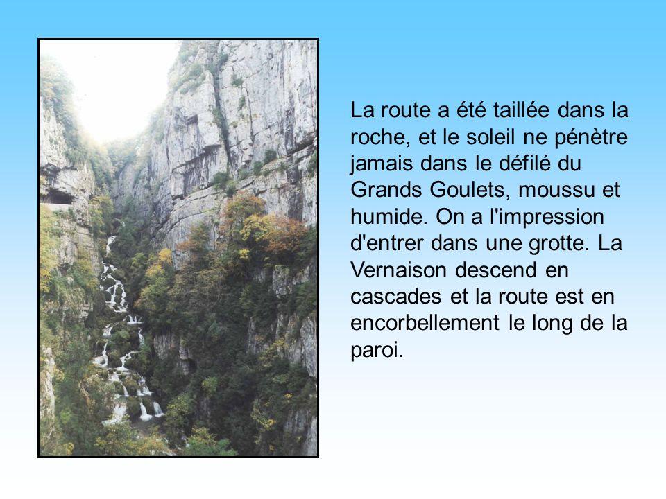 La route a été taillée dans la roche, et le soleil ne pénètre jamais dans le défilé du Grands Goulets, moussu et humide.