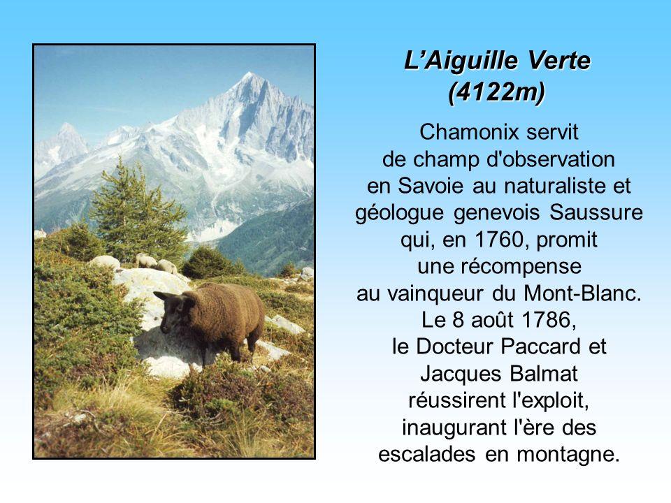 L'Aiguille Verte (4122m)