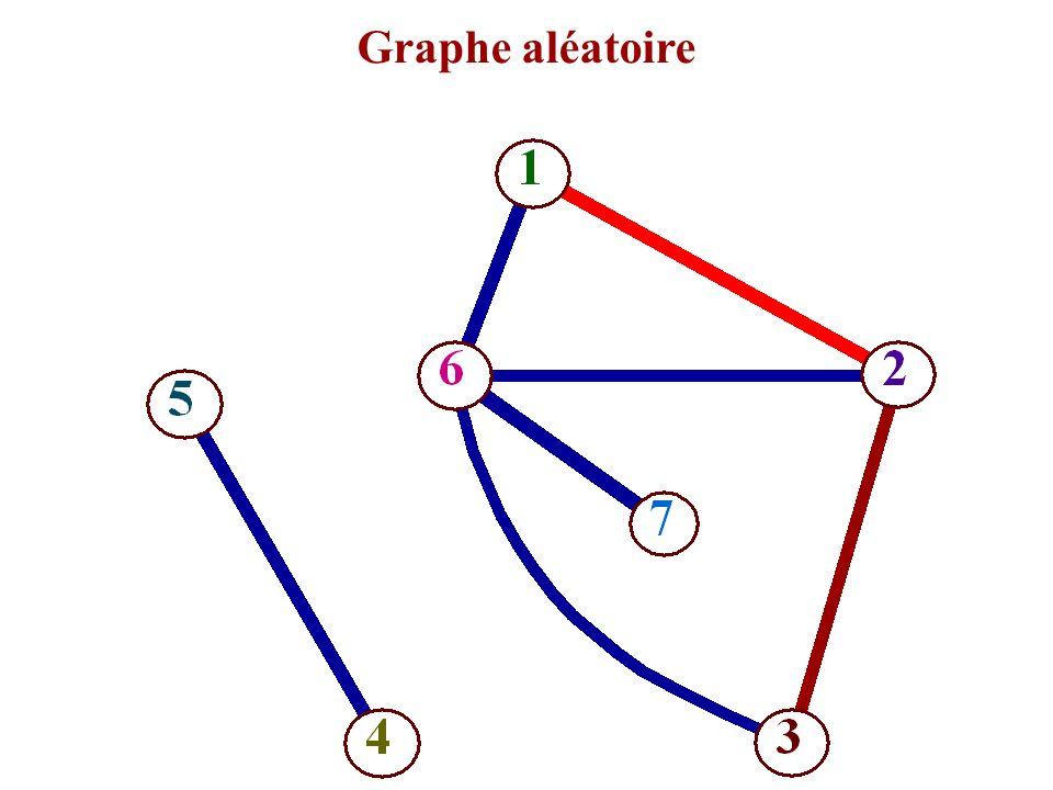 Graphe aléatoire