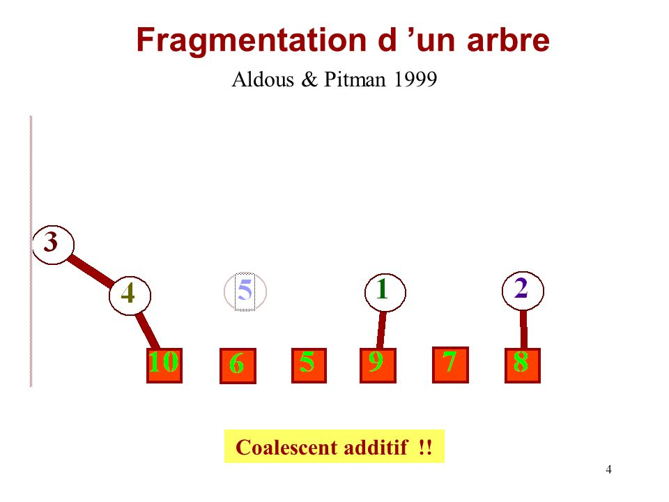 Fragmentation d 'un arbre