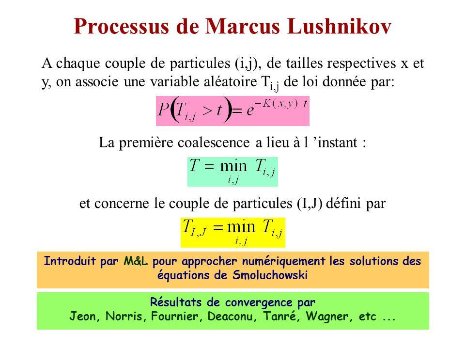 Processus de Marcus Lushnikov