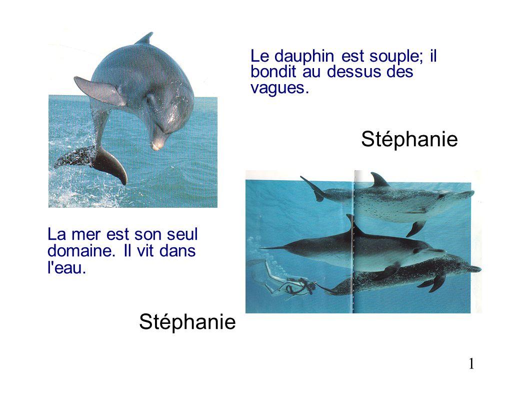 Le dauphin est souple; il bondit au dessus des vagues.