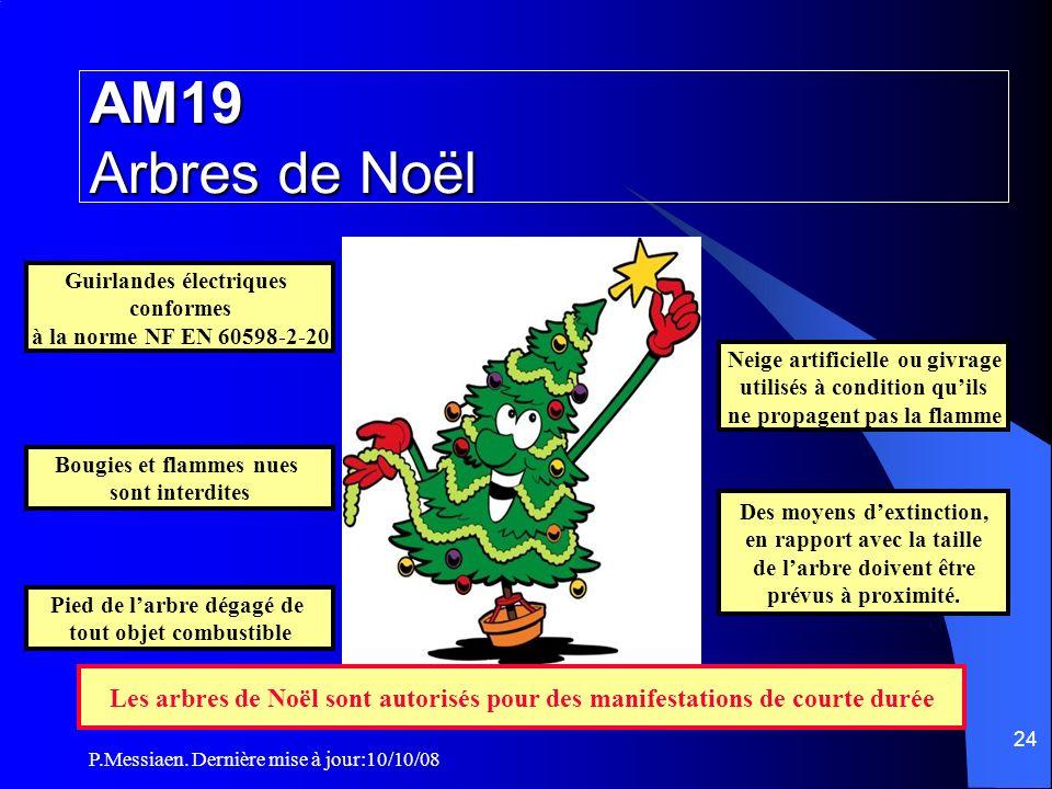 AM19 Arbres de Noël Guirlandes électriques. conformes. à la norme NF EN 60598-2-20. Neige artificielle ou givrage.