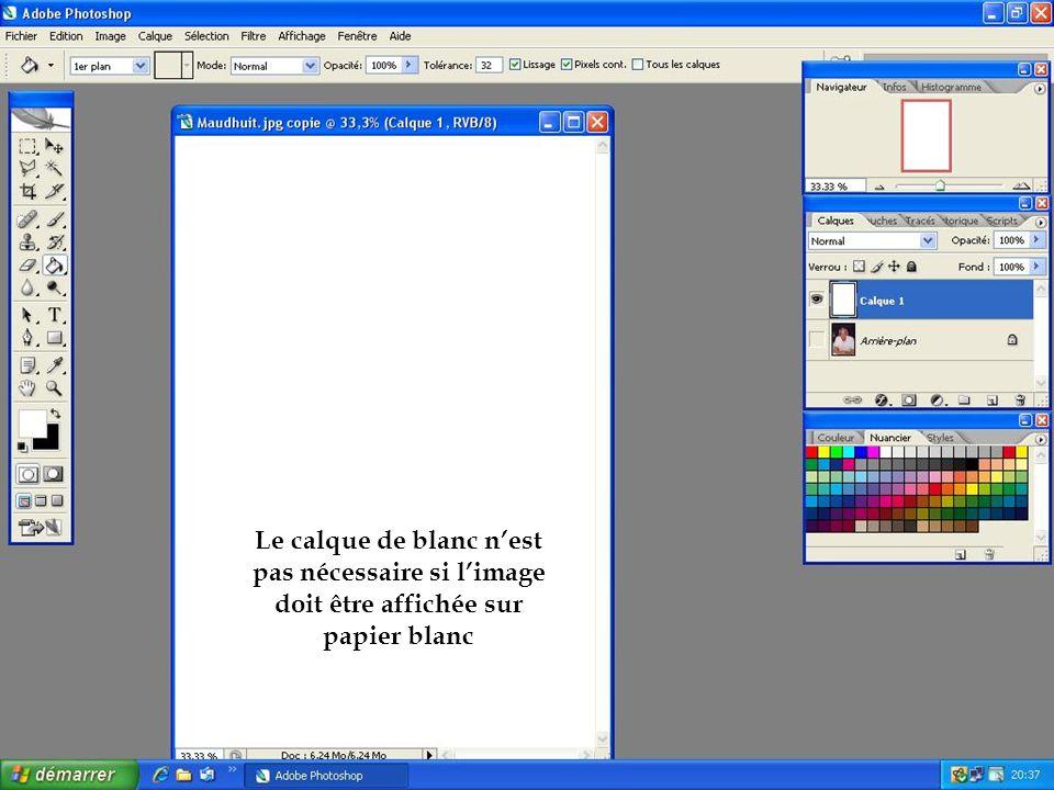 Le calque de blanc n'est pas nécessaire si l'image doit être affichée sur papier blanc