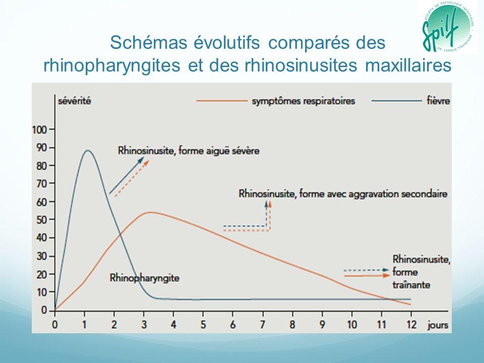Schémas évolutifs comparés des rhinopharyngites et des rhinosinusites maxillaires