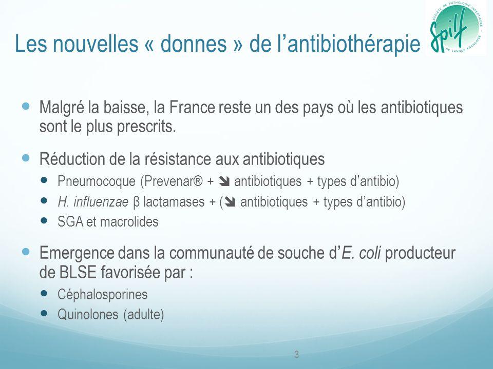Les nouvelles « donnes » de l'antibiothérapie