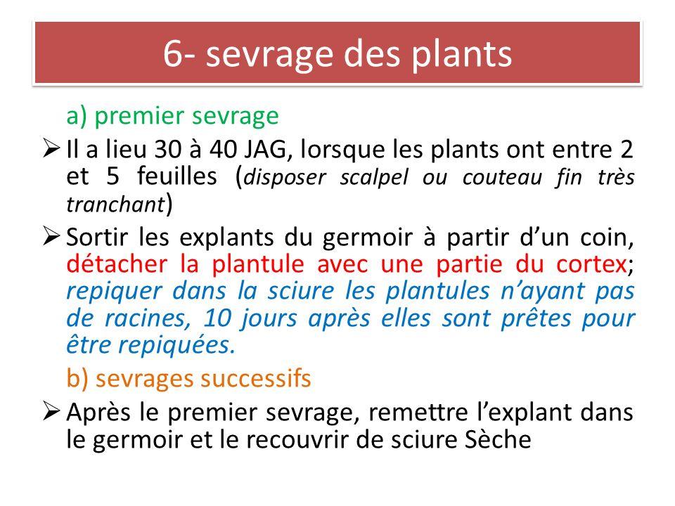 6- sevrage des plants a) premier sevrage