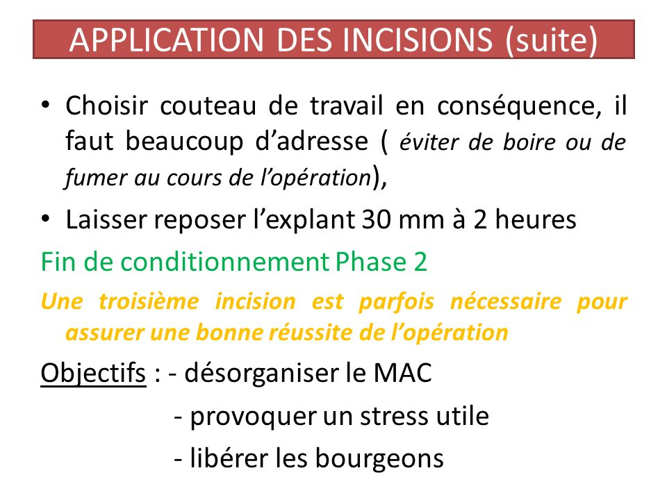 APPLICATION DES INCISIONS (suite)