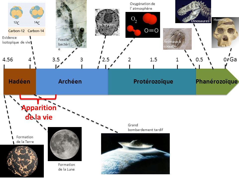 Apparition de la vie Ga Hadéen Archéen Protérozoïque Phanérozoïque