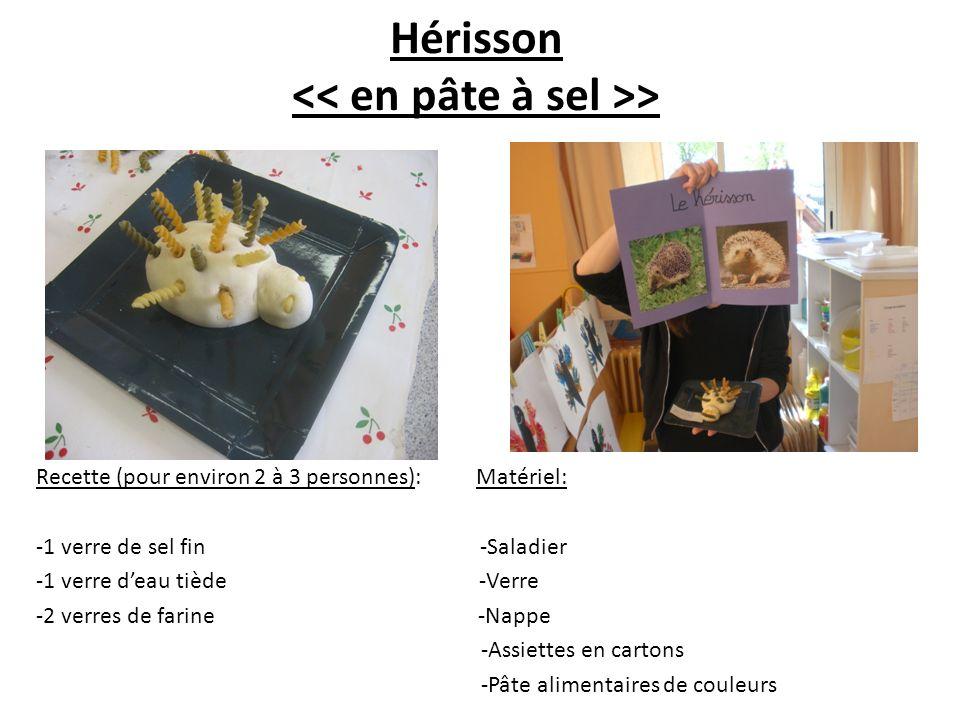 Hérisson << en pâte à sel >>