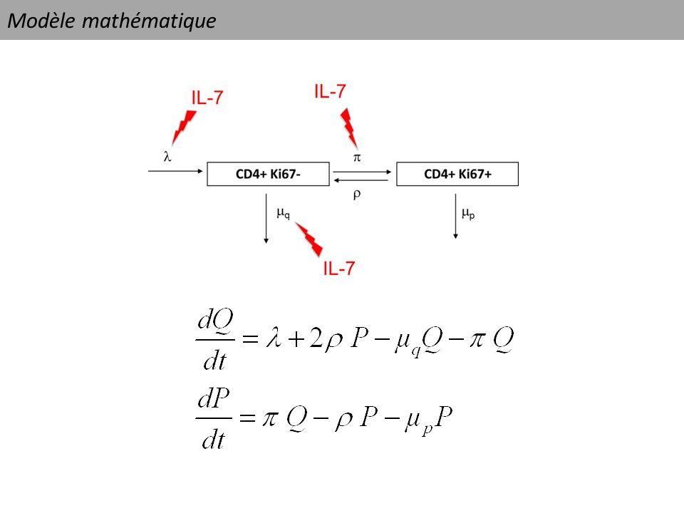 Modèle mathématique