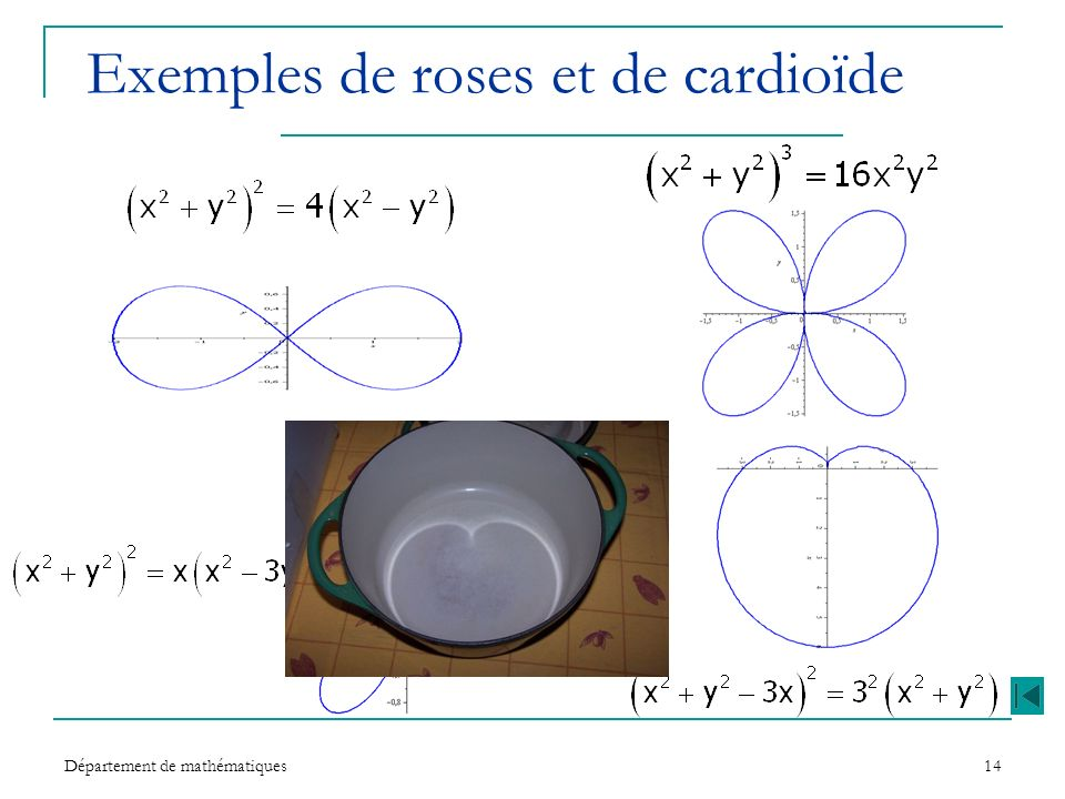 Exemples de roses et de cardioïde