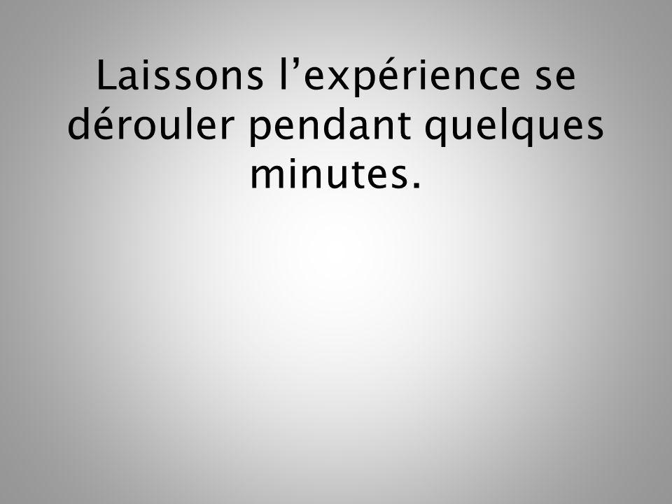 Laissons l'expérience se dérouler pendant quelques minutes.