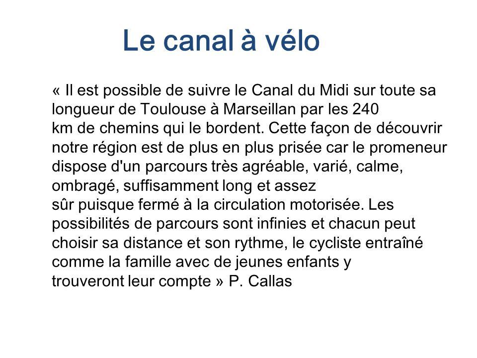 Le canal à vélo « Il est possible de suivre le Canal du Midi sur toute sa longueur de Toulouse à Marseillan par les 240.