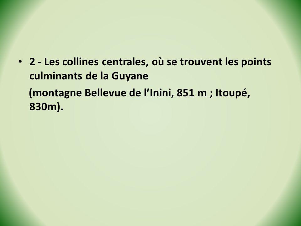 2 - Les collines centrales, où se trouvent les points culminants de la Guyane