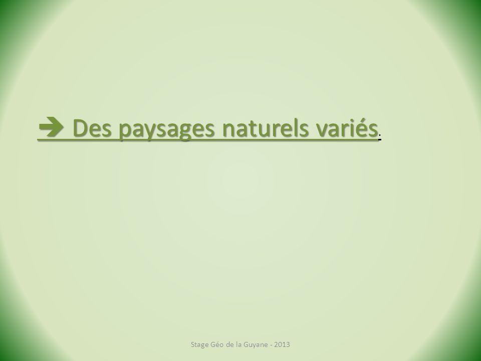  Des paysages naturels variés.