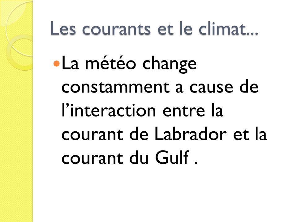 Les courants et le climat...