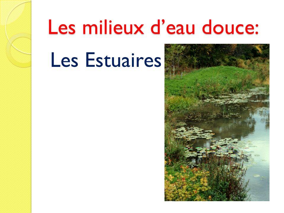 Les milieux d'eau douce: