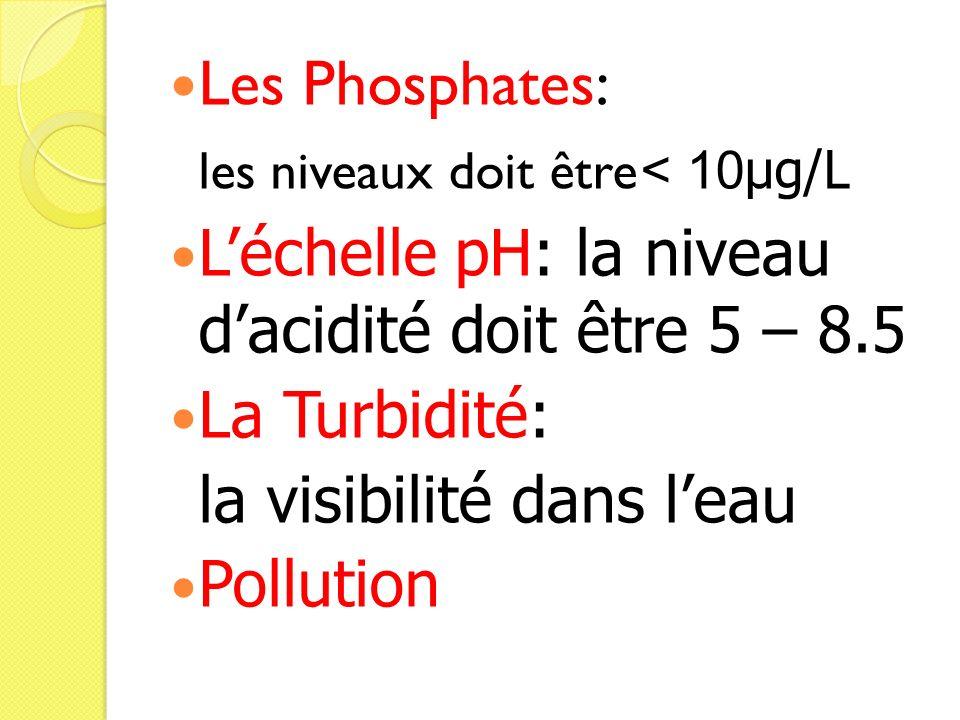 Les Phosphates: les niveaux doit être < 10µg/L. L'échelle pH: la niveau d'acidité doit être 5 – 8.5.