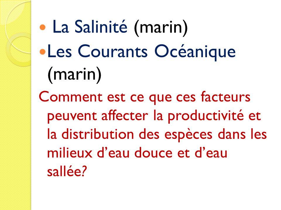 Les Courants Océanique (marin)