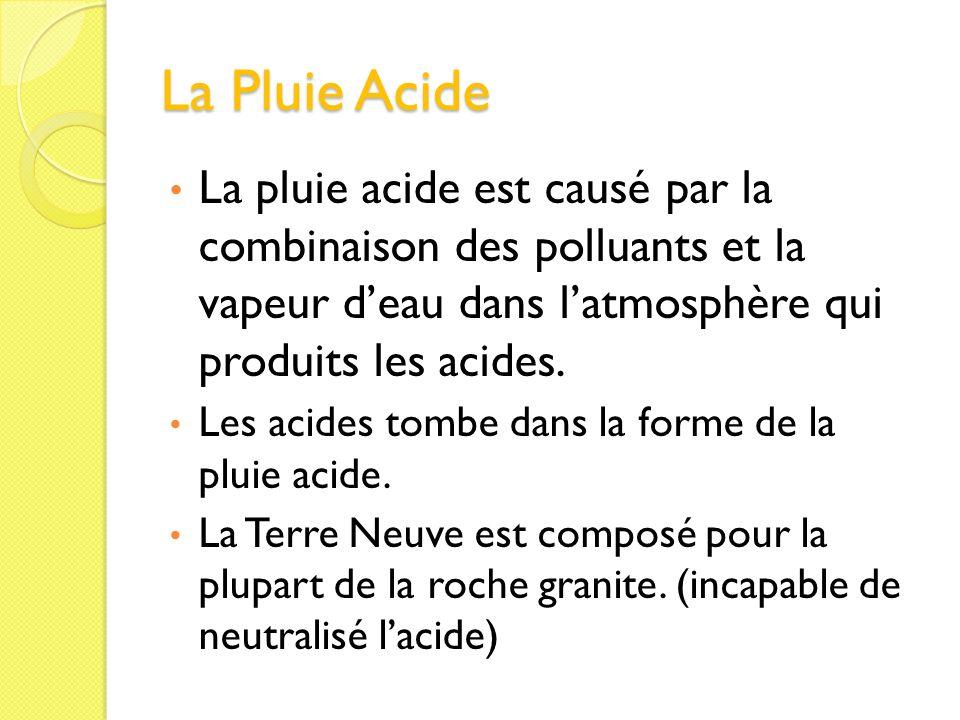 La Pluie Acide La pluie acide est causé par la combinaison des polluants et la vapeur d'eau dans l'atmosphère qui produits les acides.