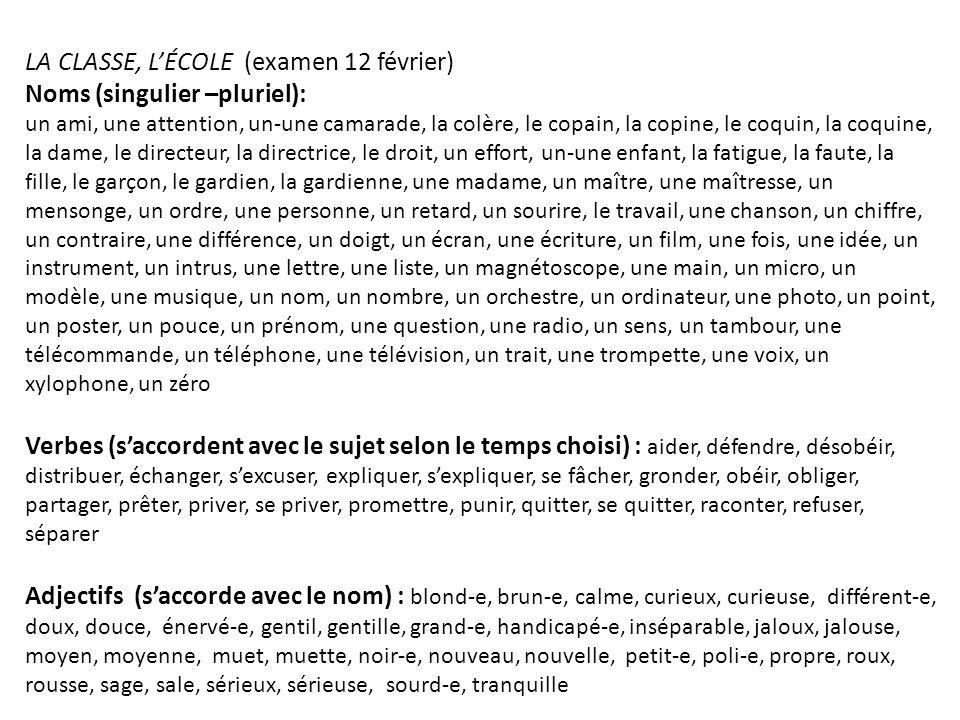 LA CLASSE, L'ÉCOLE (examen 12 février) Noms (singulier –pluriel):