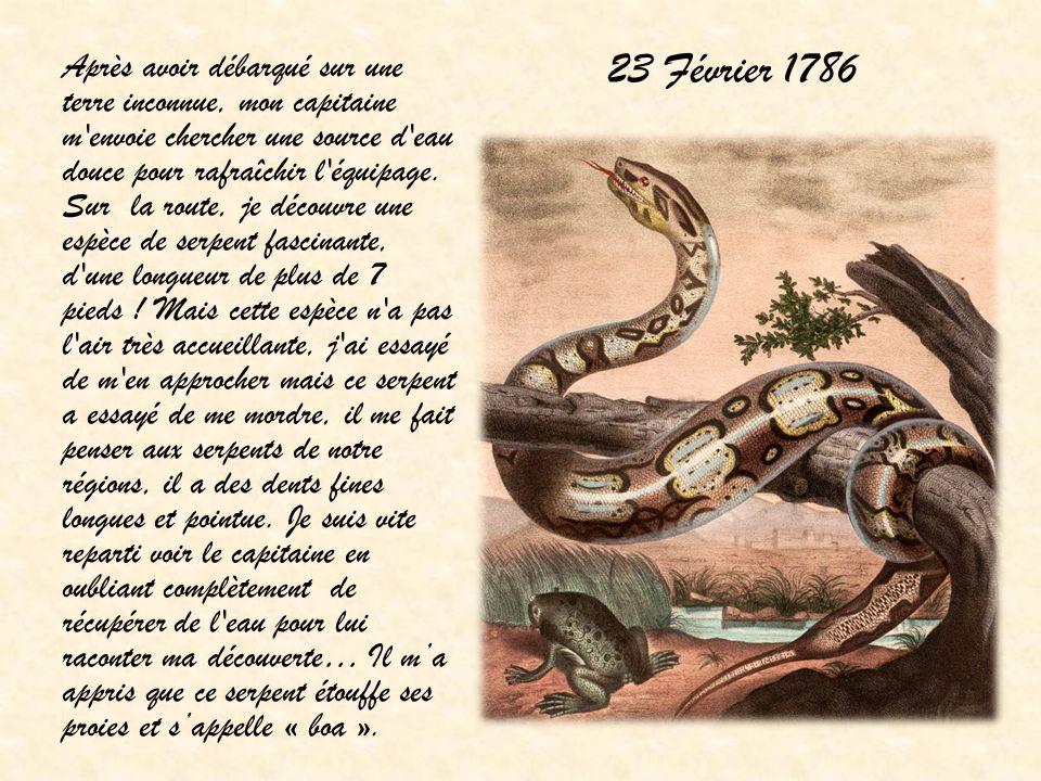 23 Février 1786