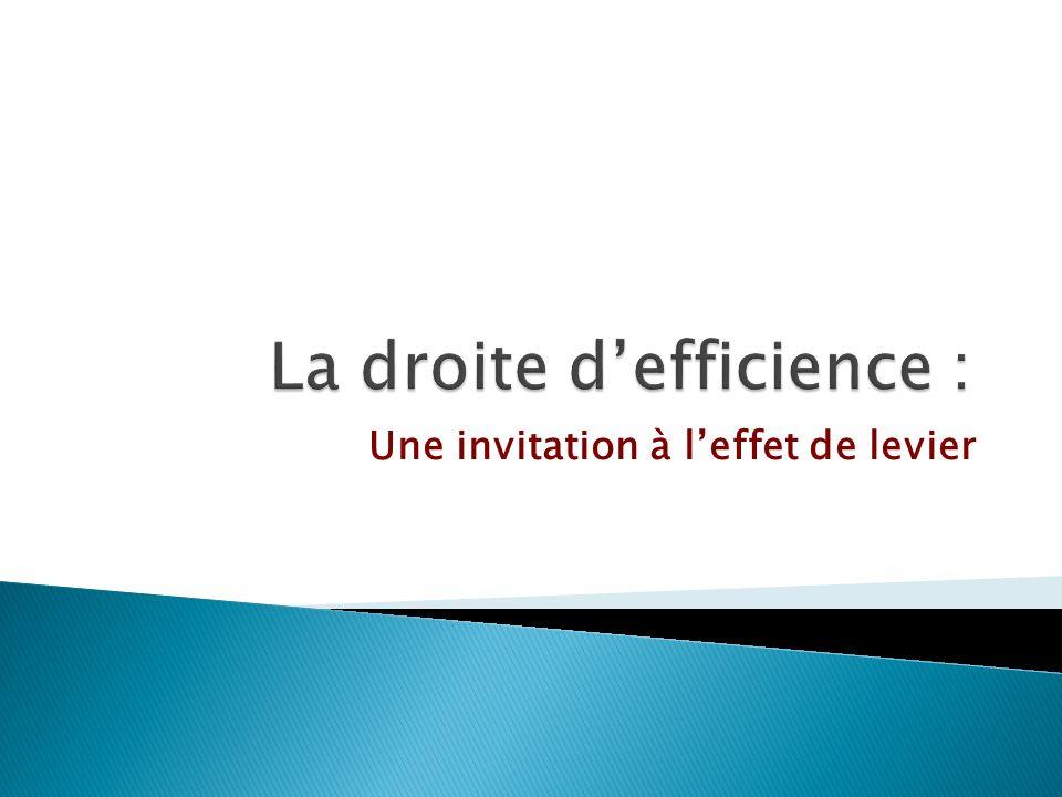 La droite d'efficience :