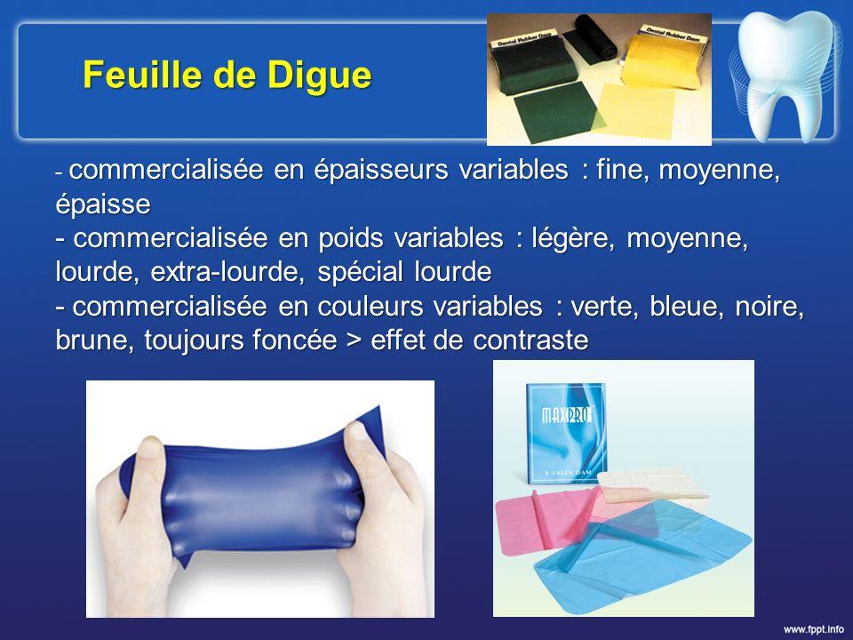 Feuille de Digue - commercialisée en épaisseurs variables : fine, moyenne, épaisse.