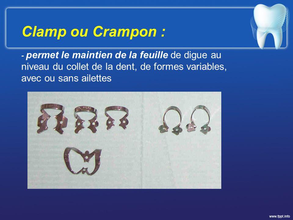 Clamp ou Crampon : - permet le maintien de la feuille de digue au niveau du collet de la dent, de formes variables, avec ou sans ailettes.